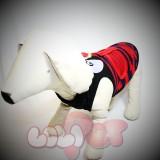 5 - Quần áo - Trang phục cho Chó