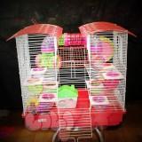 2 - Lồng - Chuồng cho Chuột Hamster
