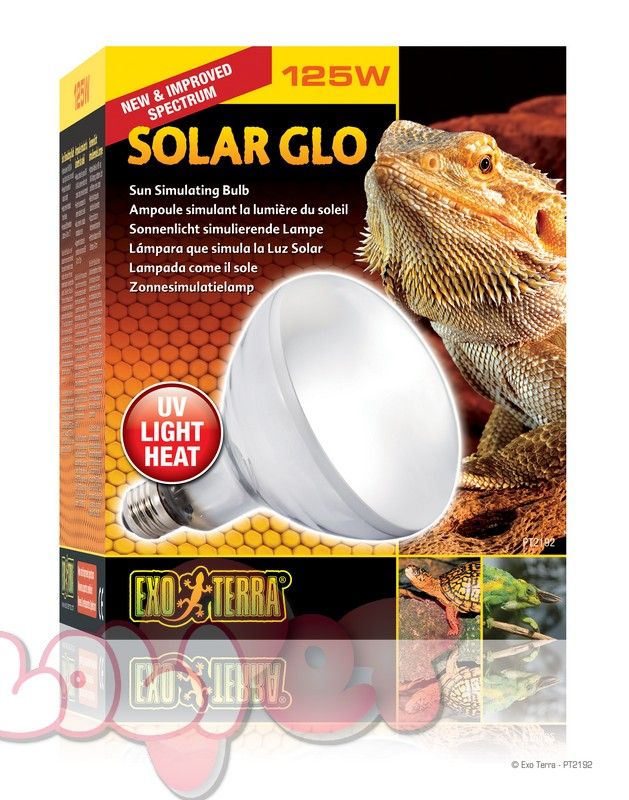 PT2192_Solar_Glo_Packaging