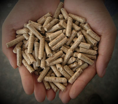 Wood-Pellets-Bamboo_webcamera360_20150207103631