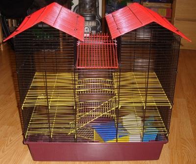 cách chọn lồng nuôi cho hamster campell chuẩn nhất