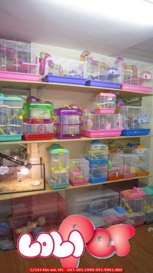 mua bán lồng hamster rẻ đẹp nhất hà nội hn - lolipet.net
