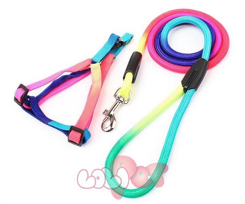 dây dắt + yên ngựa 7 màu tròn 9