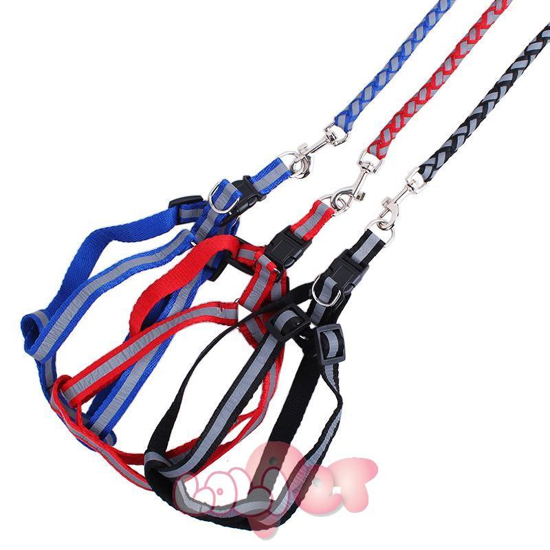 dây dắt + yên ngựa phản quang tết thừng 2