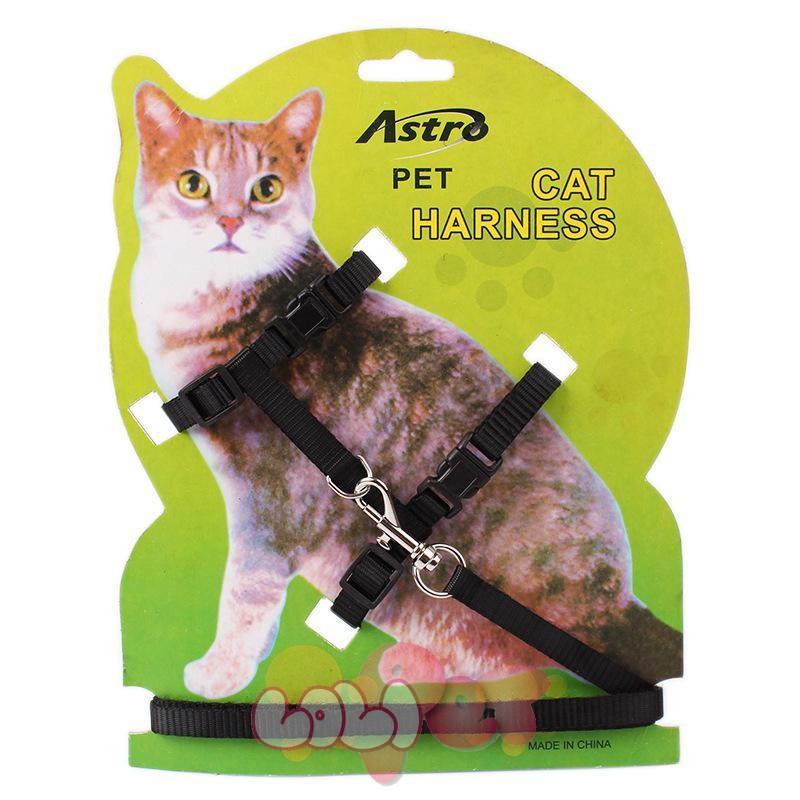 dây dắt mèo astro 4