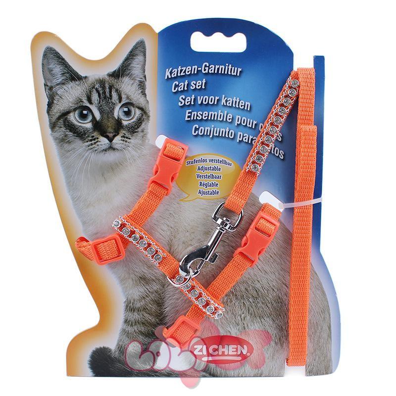 dây dắt mèo chuyên dụng 3