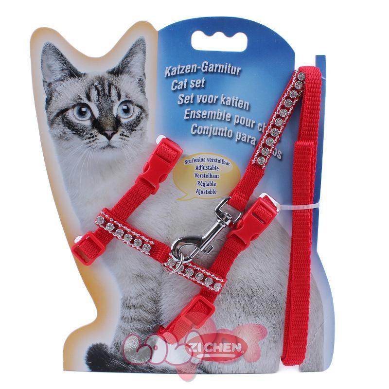 dây dắt mèo chuyên dụng 4