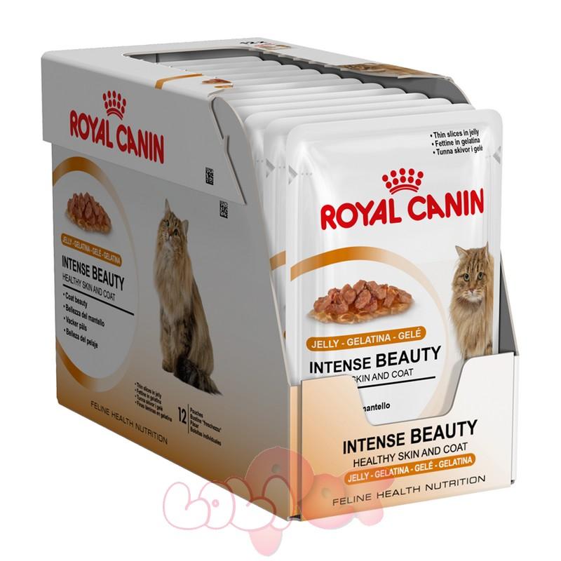 royal-canin-feline-intense-beauty-in-jelly box-p