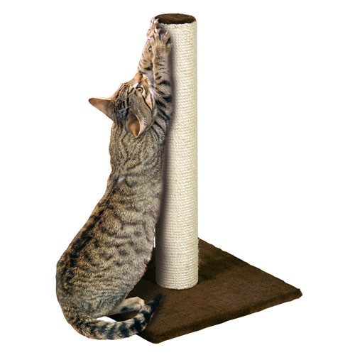 scratching-post